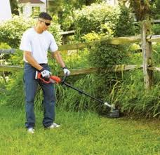 Best Weed Eater Reviews and Buying Guide 2018