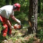 Best Electric Chain Saw Reviews 2018