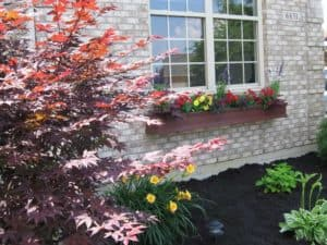 charleston-window-boxes-planters